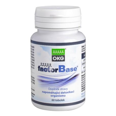 OKG FACTOR BASE